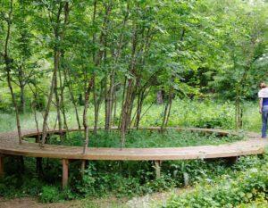 decouvrir-passerelle-d-auzay-proche-camping-lac-hautibus