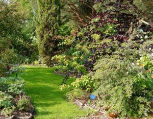 jardin-de-cistus-region-deux-sevres-decouverte-79