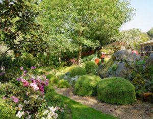 jardin-de-cistus-visite-proche-camping-lac-hautibus