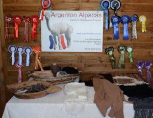 parc-animaux-alpagas-proche-camping-lac-hautibus-argenton-79
