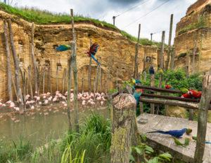 camping-avec-piscine-proche-zoo-doue-la-fontaine